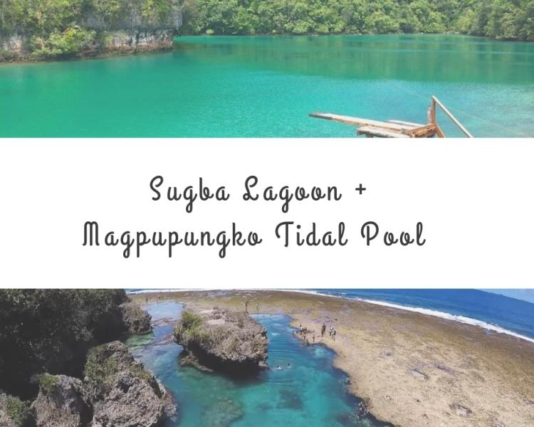 Lagoon + Tidal Pool (1)